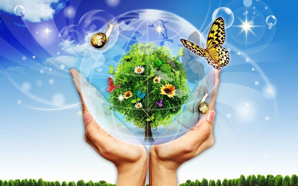 bảo vệ môi trường xanh sạch đẹp