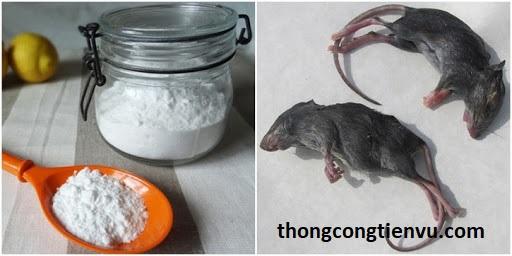 Đuổi chuột bằng bột mì