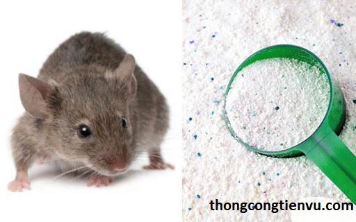 Đuổi chuột bằng xà phòng